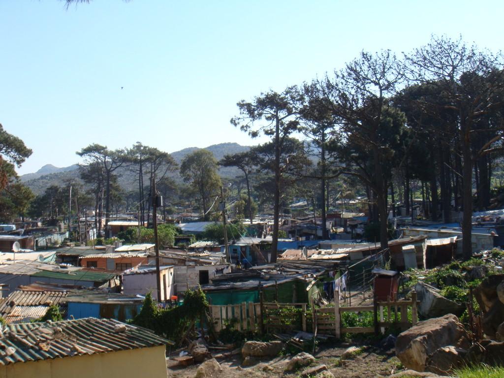 Red-Hill (sud-ouest de Cape Town) (Tavin. 07/11)