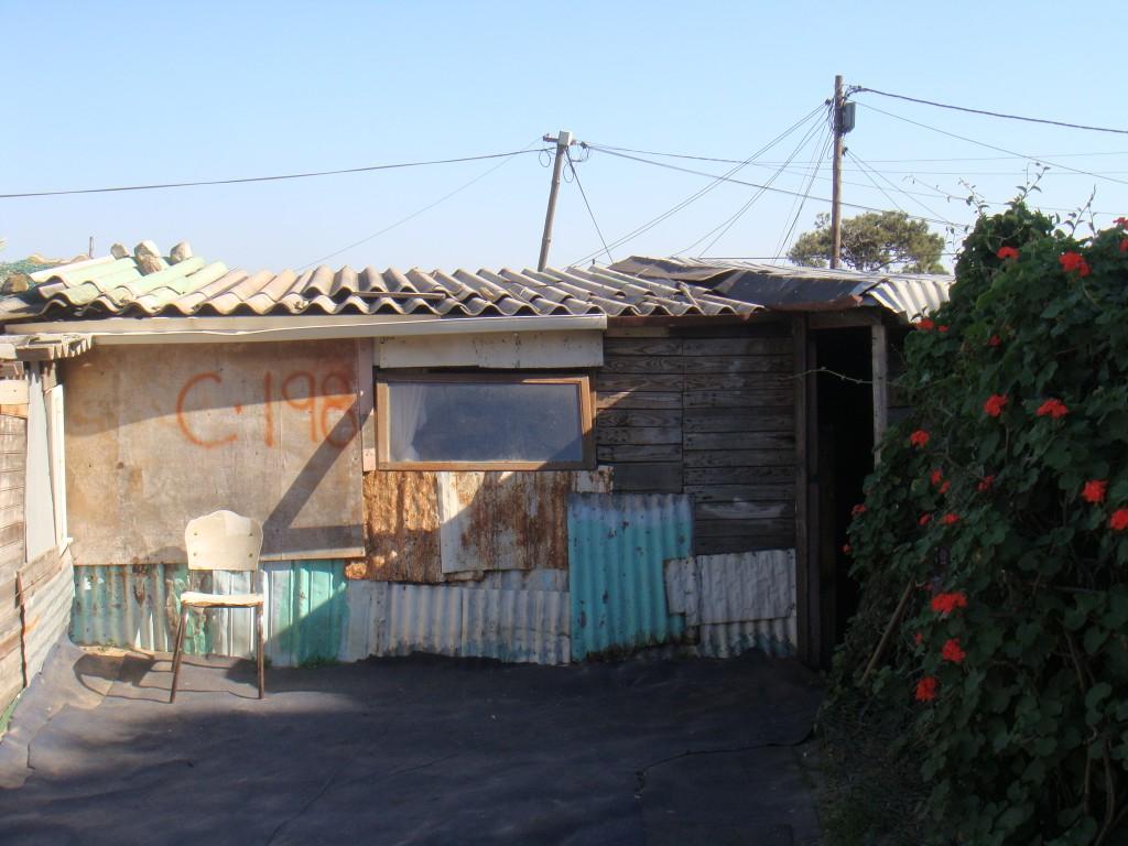 Un shack à Red-Hill (S-O de Cape Town) (Tavin. 07/11)