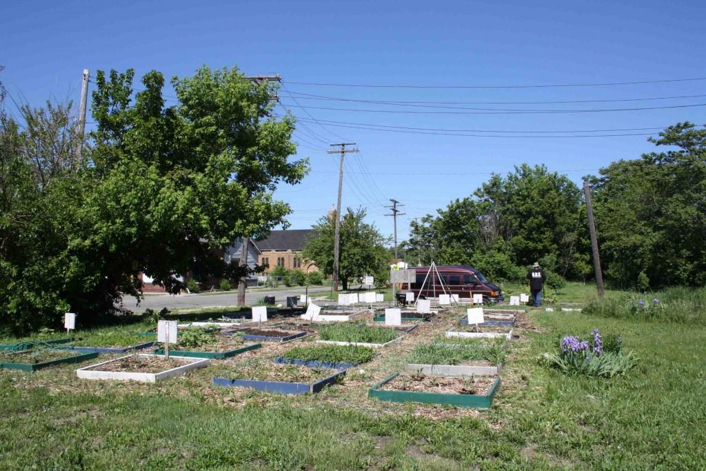 Un jardin communautaire de l'East Side de Detroit (Paddeu, 2013).