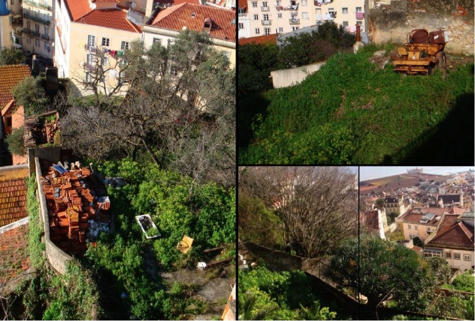 Friches urbaines sur la colline du Castelo Sao Jorge. (Tavin, 2011)