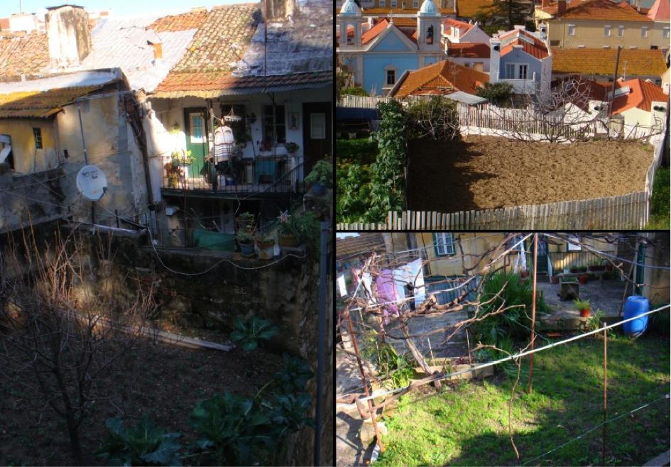 Jardin potager et champ en culture sur la colline du Castelo Sao Jorge (à g. et en b. à d.) et entre Graça et Alfama (en h. à d.) (Tavin, 2011)