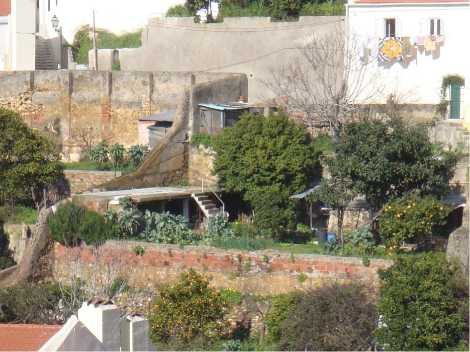 Champs et jardins privés sur le versant sud ouest de la colline de Graça (Tavin)