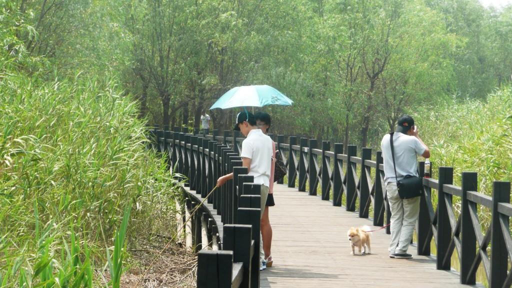 Une famille shanghaienne avec le chien de compagnie visitant le site de Xixhashidi dans l'ouest de l'île de Chongming (E. Véron, 2012).