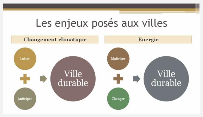 Capture d'écran du MOOC (Francou, 5 février 2014)