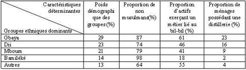 Tableau : Profil religieux et professionnel des habitants de Joli-soir. Source : Enquêtes de terrain, septembre 2013