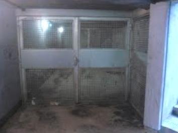 6. Grilles posées par l'administration en charge des lieux afin de bloquer l'accès aux sorties de secours du Carrousel du Louvre et mettre fin aux actes sexuels dans ce lieu (Lassaube, 2013).