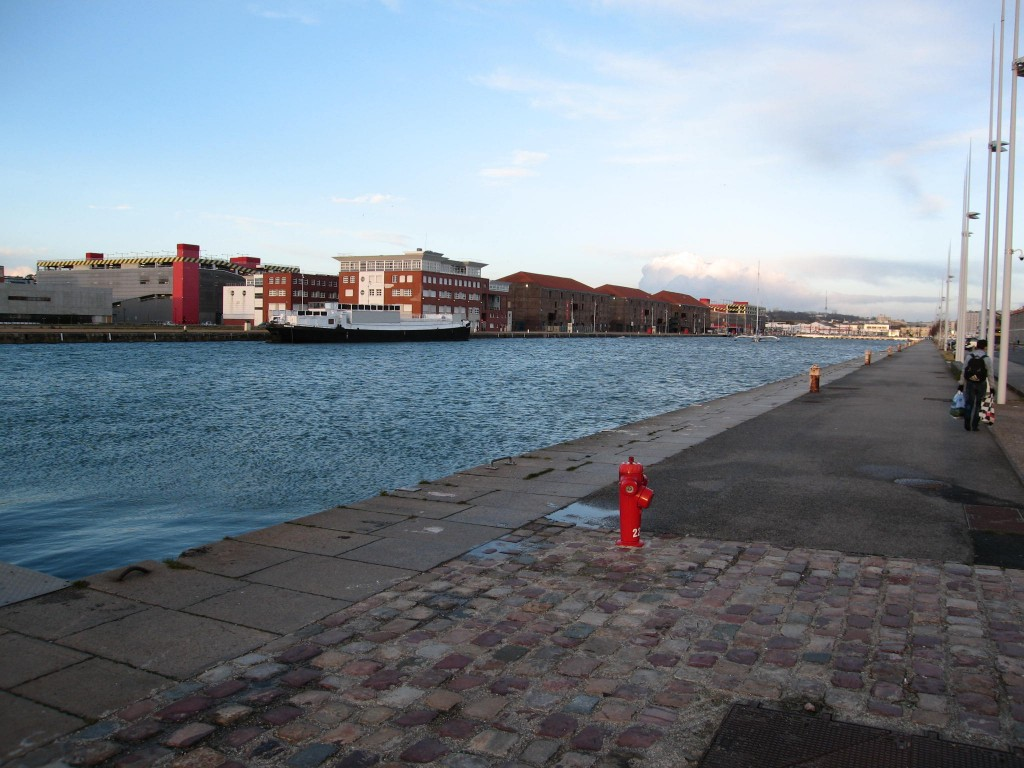 Illustration 9: Bassin Vatine, avec l'IUT rénové et les docks transformés en centre commercial (Pierre Thorez, 2014).