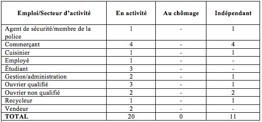 Tableau 2 : occupation professionnelle des visiteurs (Constant, 2012)