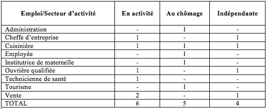 Tableau 3 : occupation professionnelle des visiteuses (Constant, 2012)