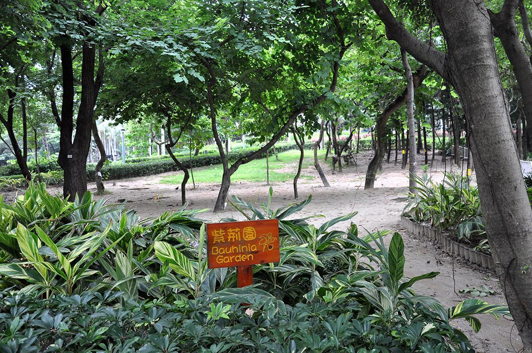 Le Bauhina Garden du Victoria Park un jour de semaine. L'espace reste vide.